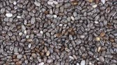 alimentação : Pile chia seeds background, close up rotation loopable 4k top view. Food background. Gastronomy concept, organic food. Macro chia seeds