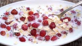 natural yogurt : Red wild strawberry, close up muesli, macro. Concept of fitness, diet, wellness and breakfast Stock Footage