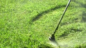 Professional gardener mowing lawn lawn mower. On a sunny day young, close up Dostupné videozáznamy