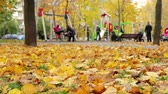 november : Beautiful nature scene of Autumn Leaves and hurrying people in autumnal Park. Titelapse. playground