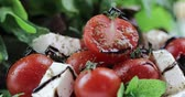 オレガノ : Vitamin salad from mozzarella, cherry tomatoes and lettuce is decorated with balsamic vinegar