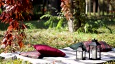 Бургундия : Autumn warm days. Indian summer. Blanket of autumn leaves in the garden. Selective focus. Стоковые видеозаписи