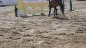 paw : Horse runs and jumps through a barrier at sport competition. Close up of horse feet galloping. Professional jockey rides on horseback. Slow motion