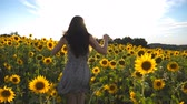free country : Unrecognizable girl running on yellow sunflower field with sun flare at background. Follow to young woman jogging at beautiful flower meadow. Freedom concept. Slow motion