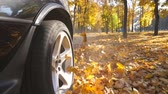 autoband : Wheel of powerful car driving on park road over yellow autumn leaves in sunny day. Colorful autumn foliage flies out from under wheel of auto. Long alley at background. Slow motion Close up
