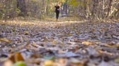 stopy : Young athletic man runs down path in autumnal forest. Guy jogs stepping on dry fallen leaves. Sportsman is training at wood. Exercising outdoors. Blurred background. Slow motion Wideo