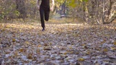 stopy : Young unrecognizable man runs down path in autumnal forest. Guy jogs stepping on colored fallen leaves. Athlete is training at wood. Exercising outdoors. Blurred background Slow motion