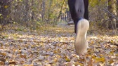 stopy : Legs of strong man running at forest path covered with colored foliage. Guy jogs stepping on dry fallen leaves. Athlete is training and exercising outdoor. Slow motion Close up Wideo