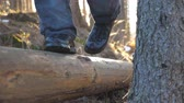 stopy : Close up of male feet walking over wood log lying in pine forest. Unrecognizable young man spending time on nature during travel. Concept of vacation or holiday. Low angle of view. Slow motion Wideo