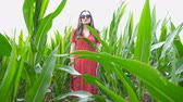 чувственный : Attractive young girl in red dress with long brown hair standing against the background of corn field and looking into camera. Beautiful woman in sunglasses in meadow at overcast day. Crane shot Стоковые видеозаписи