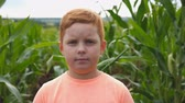 olhares : Portrait of young serious red-haired boy looking into camera against the blurred background of corn field. Little kid standing in meadow. Close up emotions of male child with sad expression on face