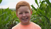 milharal : Happy little red-haired kid looking into camera and laughs covering her face with hand. Portrait of funny ginger boy standing with joyful smile against the blurred background of corn field. Slow mo