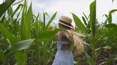 olhares : Happy small kid with long blonde hair running through corn field, turning to camera and smiling. Beautiful little girl in straw hat having fun while jogging over the maize plantation. Slow motion Stock Footage