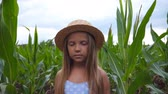 olhares : Portrait of little serious girl in straw hat looking into camera against the background of corn field at organic farm. Small child with long blonde hair standing in the meadow at overcast day Stock Footage