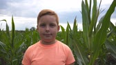 olhares : Close up of young red-haired boy looking into camera against the background of corn field at organic farm. Portrait of little cute kid standing in the maize plantation at overcast day