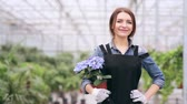 сияющий : Beautiful florist with hydrangea