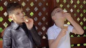 cone : Two adorable brothers eats ice cream in gazebo in park Stock Footage