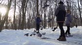 feeder : Three boys feed pigeons in winter park