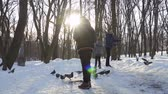 feeder : Three boys feed birds in winter park in slow motion Stock Footage