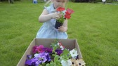 helpful : Cute little girl take out flowers in pots from cardbox on green grass