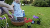 helpful : Father help little daughter to dig hole in the soil in the pot for flowers