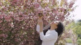 adult : Beautiful woman smell sakura flowers Stock Footage