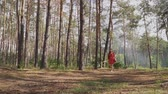 bowman : Young woman with bow walking in forest