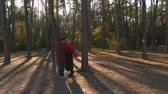 ırklararası : View from above on a couple embracing in a pine forest in sunset light. A loving interracial couple have a date and hugs. Shooting from the drone. Slow motion.