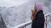 jorkšírský : Portrait pretty young girl holding a yorkshire terrier standing on the bridge on a background of snow covered trees in a winter park. A teenager and a dog on a walk outdoors. Slow motion. Dostupné videozáznamy