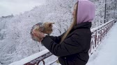 jorkšírský : Cute young girl holding a yorkshire terrier standing on the bridge on a background of snow covered trees in a winter park. A teenager and a dog on a walk outdoors. Slow motion. Dostupné videozáznamy