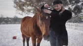 породистый : Young blond woman petting face and mane of beautiful brown horse at a ranch. Lady takes off hat and puts on the horses head. Girl in warm clothing spends time with horses in the winter paddock