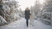 leading : Pretty girl walks with horse in the snow winter ranch. Young woman leading her horse with his head collar talking to animal and smiling. Concept of horse breeding Stock Footage