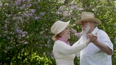 família : Portrait of beautiful adult couple dancing waltz in park Stock Footage