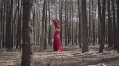 practising : Professional young woman in red dress dancing in the forest. Beautiful lady touching a tree. Concept of female tenderness and harmony life. Spectacular impressive view. Slow motion