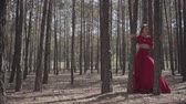 expressando : Flexible young woman in red dress dancing in the forest. Beautiful lady touching a tree. Concept of female tenderness and harmony life. Spectacular impressive view. Slow motion