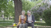 parceria : Portrait cute adult couple looking old photos remembering happy moments sitting on a bench in the park. Mature couple in love resting on a sunny warm spring day outdoors.