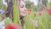 mák : Portrait of pretty girl sitting in poppy field. Connection with nature. Green and red harmony. Contrast colors in poppy. Blossoming poppies. Dostupné videozáznamy