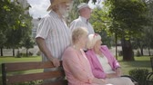 korosztály : Two adorable mature couples talking and smiling at the bench in the summer park. Double date of senior couples. Friendly company resting outdoors. Old men and women met together. Retired people.