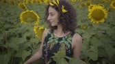 slunečnice : Cute curly woman walking on the sunflower field. Bright yellow color. Freedom concept. Happy woman outdoors. Slow motion.