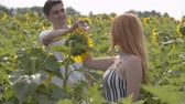 versicherung : Beautiful happy couple dancing together on the sunflower field. Ginger girl with her boyfriend resting outdoors. Connection with nature. Freedom concept. Happy teens outdoors.