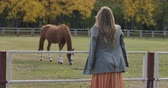 фрак : Back view of attractive Caucasian woman with long brown hair standing next to corral in autumn park. Pretty girl in checkered jacket looking at the horse eating grass. Cinema 4k footage ProRes HQ.