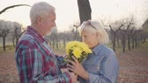 даты : Senior Caucasian man giving chrysanthemum bouquet to his lovely wife and kissing her. Positive European mature family spending romantic evening in autumn park. Aging together, eternal love concept.