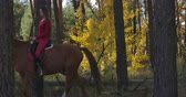 eyer : Side view of Caucasian woman with long hair dressed in pink clothes riding brown horse in autumn forest. Young female equestrian resting with her animal friend outdoors. Cinema 4k footage ProRes HQ.