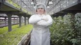 vegetarianismo : Camera approaching to senior confident Caucasian woman in protective eyeglasses and white robe crossing hands and looking at camera. Professional female agronomist working in glasshouse. Agriculture. Stock Footage