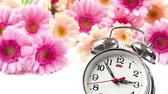 horloge vintage : Vintage Clock Flower Background
