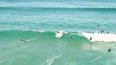 south australia : view of surfers swimming out to sea and catching waves. NSW. Australia. Stock Footage