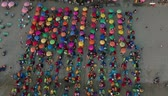 rosa : Aerial Top Down View Of Colourful Beach Umbrellas In Bali. Indonesia