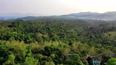 vadi : drone flying trough tall trees in tropical rain forest of Banten Indonesia.