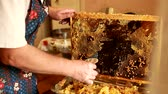 медовый : Close up of human hand extracting honey from yellow honeycomb. Beekeeper cuts wax off honeycomb frame with special knife.