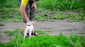 patas : Siamese cat rubs against teen boys legs